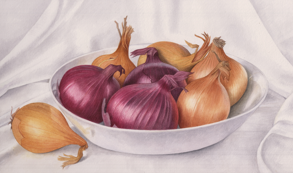 Red & brown onions in bowl £200 Dimensions incl. frame 30 x 40 cm